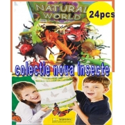 Insecte Fosforescente